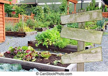 légume, jardin herbe