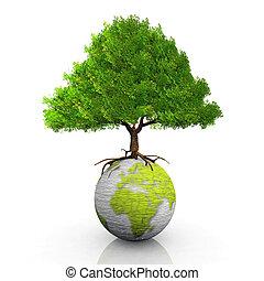 la terre, arbre, séance