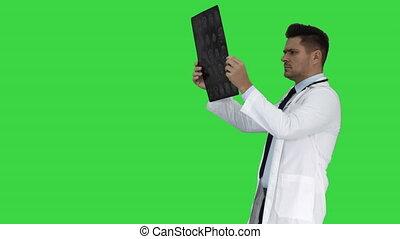 labcoat, balayage, marche, radiographic, personnel, image, chroma, écran, regarder, quoique, vert, key., healthcare, blanc, ct, rayon x, mri