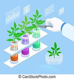 laboratoire, genetics., organique, explorer, nouveau, méthodes, tubes., plante, concept, nourriture, agricole, usines, essai, hydroponic, croissant, élevage, isométrique