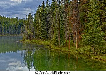 lac, parc, national, banff, herbert