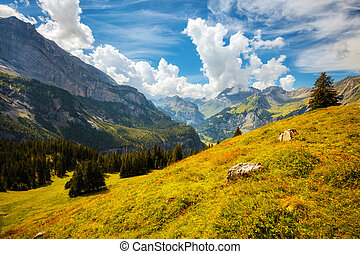 lac, suisse, kandersteg, glacial, oeschinensee., endroit, environs, europe., emplacement, scénique, alpes