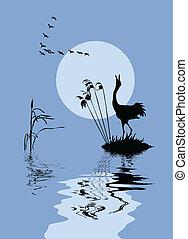 lac, vecteur, silhouette, oiseaux