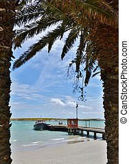 lagune