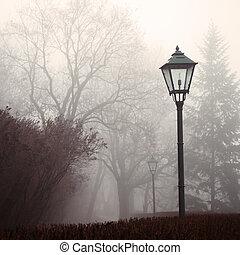 lampe, brouillard, parc, rue, forêt