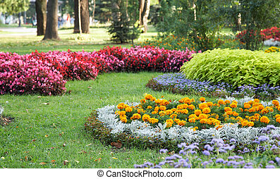 landscaping, fleur