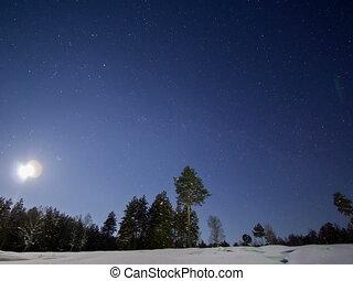 lapse., ensembles, lune, forest., retard, 4x3
