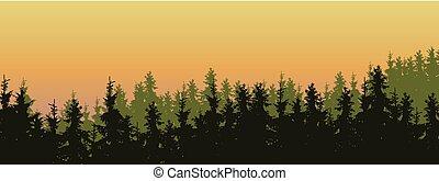 large, conifère, pins, écran, ciel, trois, sapins, matin, vecteur, vert, illustration, sous, orange, couches, forêt