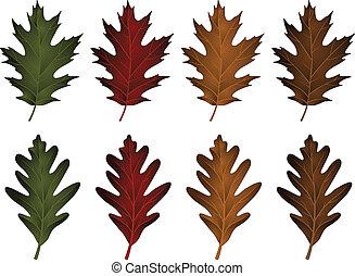 leaves-black, chêne, blanc