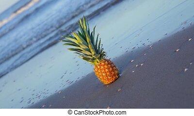 lent, ananas, mer, mouvement, sable, couvertures