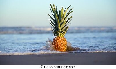lent, sable, couvertures, mouvement, ananas, mer