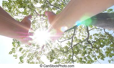 lent, soleil, motion., arbre., par, tenant mains
