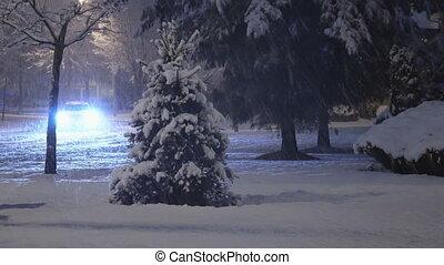 lentement, rue, couvert, nuit, neige, voitures, secteur, conduite, résidentiel