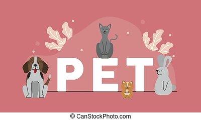 lettrage, caractères, animaux familiers, animation