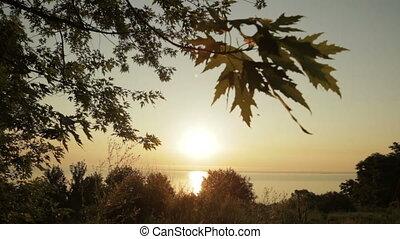 levers de soleil, nature