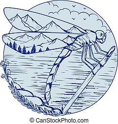 libellule, dessin, montagnes, ailes