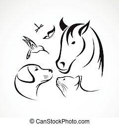 libellule, -, vecteur, cheval, isolé, oiseau, groupe, fond blanc, papillon, chat, chien, animaux familiers