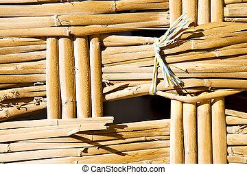 ligne, texture, closeup, bambou