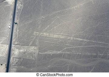 lines., nazca
