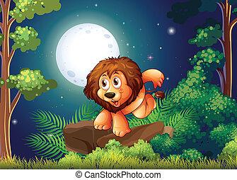 lion, forêt