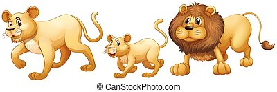 lion, marcher ensemble, famille