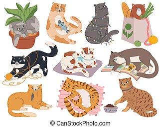lit, ensemble, espiègle, mignon, jouer, dormir, jouets, dessin animé, pot., pelucheux, vecteur, plante, ou, chouchou, fil, caractère, chaton, séance, cats., animal