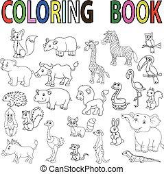 livre, sauvage, coloration, dessin animé, animal