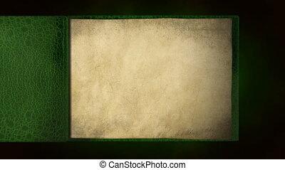 livre, vieux, vert, vide, renverser