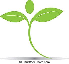 logo, feuilles, vecteur, vert, eps10