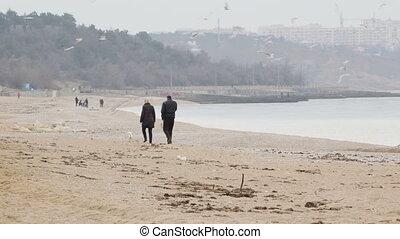 long, marche, plage, couple, chien