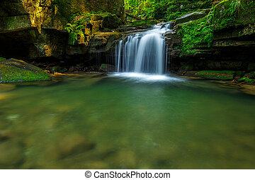 long, pendant, été, forêt, vert, chutes d'eau, exposition