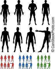 longueur, entiers, dos, devant, silhouette