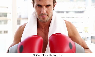 looki, crise, boxe, homme, gants, porter