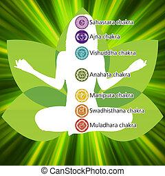 lotus, 8, yoga, template., eps