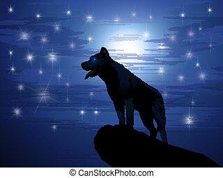 loup, étoiles, contre, lune