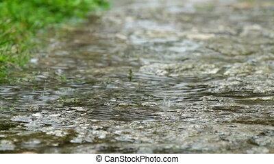 lourd, printemps, pluie