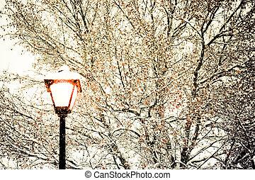 lumière, rue, hiver