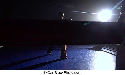 lumière, silhouette., derrière, trains, anneau, homme