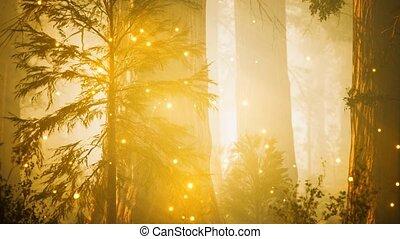 lumières, fantasme, magique, luciole, forêt