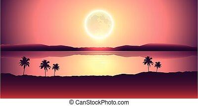 lune, entiers, palmiers, paysage tropical, bannière, nuit, vacances