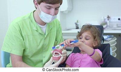 mâchoire, tient, nettoie, dentiste, brossez dents, girl