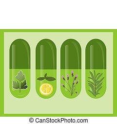 médecine fines herbes, vecteur