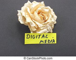 média, mot, numérique