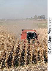 maïs, combiner