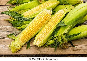 maïs sucré, oreilles, jaune, frais