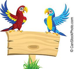 macaw, vide, oiseau, enseigne