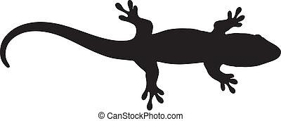 madagascar, graphique, silhouette, vecteur, bébé, gecko., jour