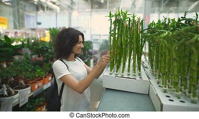 magasin, plante, appartement, elle, jeune femme, choisir, joli