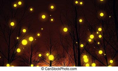 """magic, lights"", silhouette, arbre, fantasme, forêt"