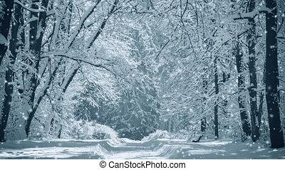 magique, fantastique, vue, forêt parc, paysage, conte fées